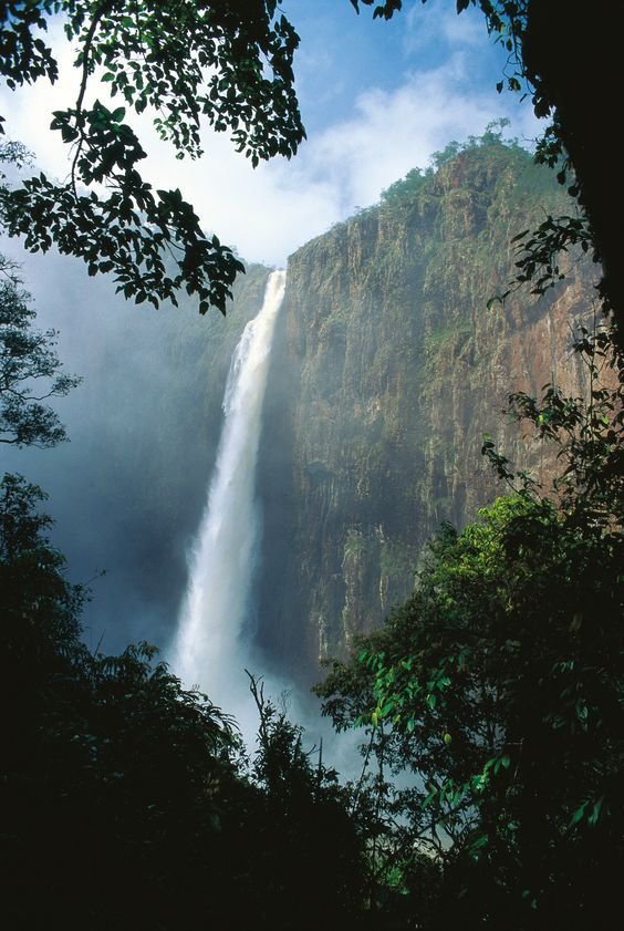 Wallaman falls is Australia's highest single-drop waterfall, Girringun National Park, Queensland.