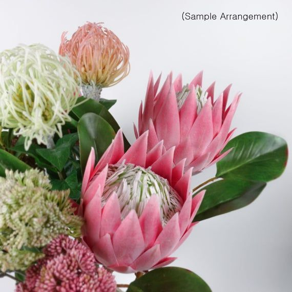 Big Size Protea King Flower Bloom In Pink 65cmh Australian Native Artificial Flowers Home Party Decor Diy Flower Arranging In 2020 Artificial Flowers Flower Arrangements Diy Australian Native Flowers