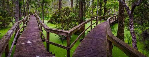 Whooping Crane Pond Conservancy, Hilton Head Island, SC