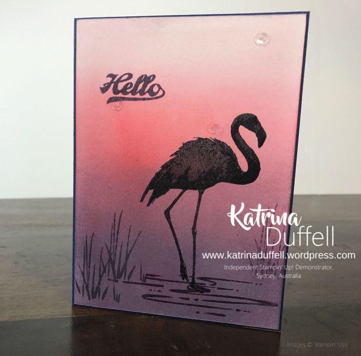 27.05.2017 Fabulous Flamingo Sunset 01