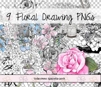 Floral Drawing PNGs by LadyComma.deviantart.com on @DeviantArt