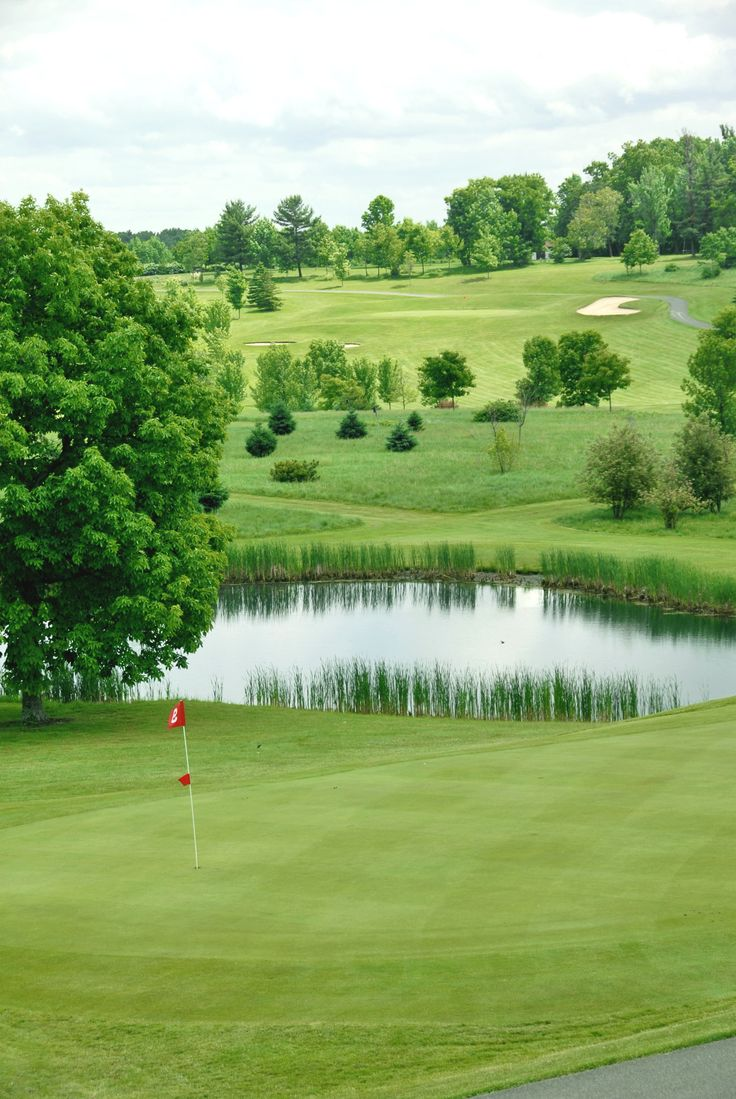 Pinnacle State Park Golf Course has breathtaking views and tremendous vistas, including the Canisteo River Valley, Harris Hill and the village of Addison. The park is known for its challenging 9-hole golf course, - See more at: http://nysparks.com/parks/4/details.aspx#sthash.zTqI0N6J.dpuf