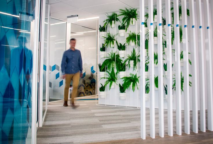Plant wall designed by Ryan McQuerry