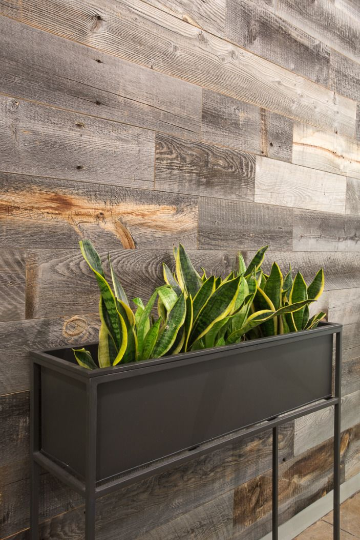 Reclaimed wood, a full bar and wall text-as-decals for a space that runs between fun and sophisticated. Check out StellaService's office in the slideshow and see how our designer Lorenzo transformed the gut renovation into a place for hosting high-end clients.