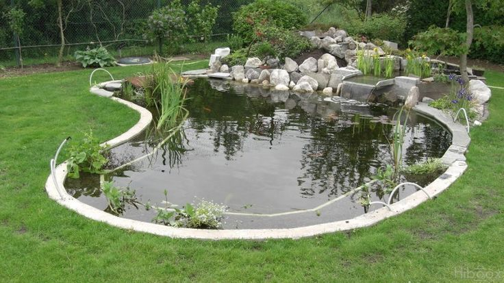 45 Best Bassin Images On Pinterest Backyard Ponds Natural Swimming Pools And Water Fountains