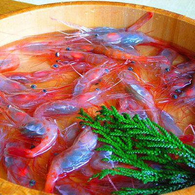 JAN-MAY活甘えび石川志賀町では全国的にも珍しい、カゴ漁という漁法での甘えび漁が盛んです。そのエビを生きたまま配送し、いつでもどこでも新鮮な味が楽しめる事で人気です。