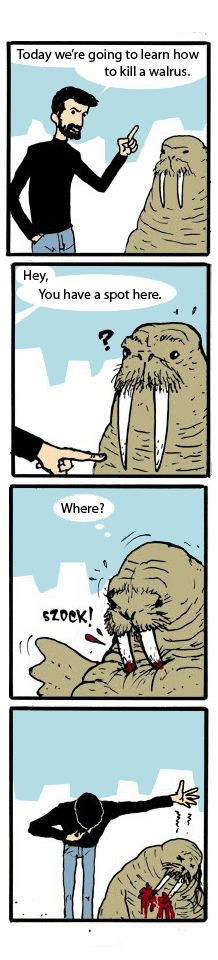I laughed way to hard at this!