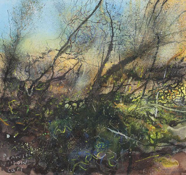 'PENWITH WILLOW CARR' by Kurt Jackson | Tree Gwedhen.     ✫ღ⊰n