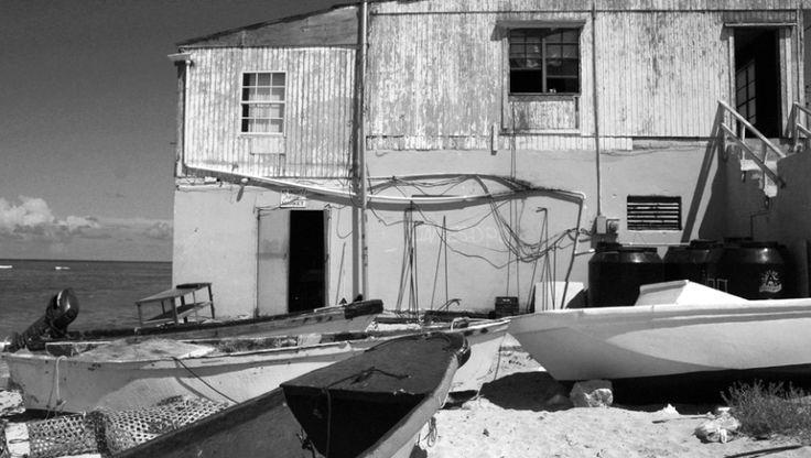 Sea Scape on Grand Turk Island - ID: 2723220 © Melissa  Gurdus