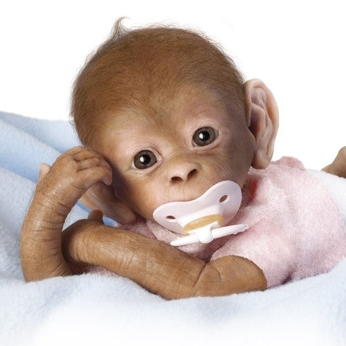 100 Best Images About Baby Monkey On Pinterest
