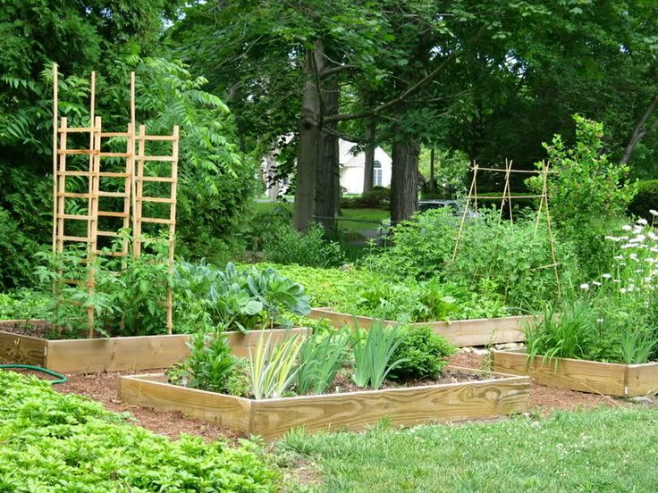 30 best images about backyard projects on pinterest - Safest material for raised garden beds ...
