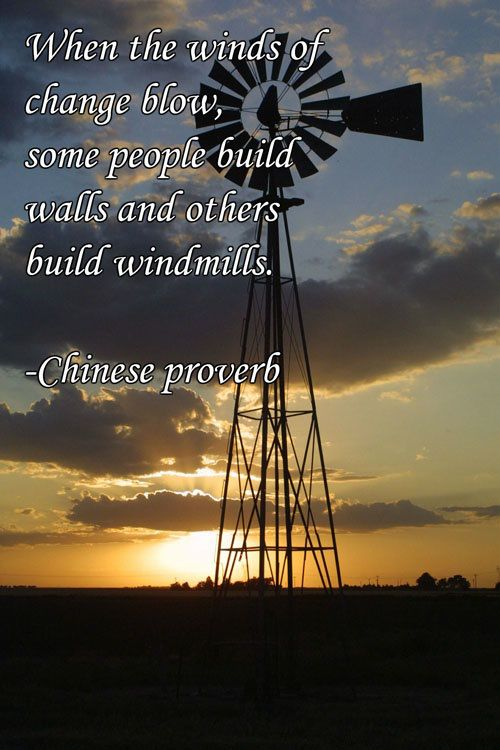When the winds of change blow, some people build walls and others build windmills