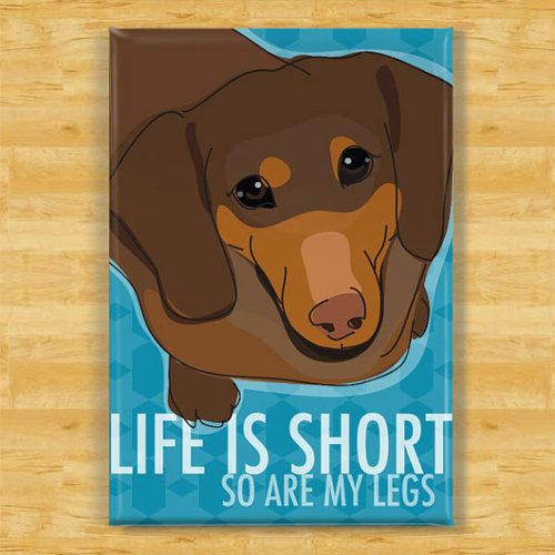 Cailtlin Wolford...I need you to paint me one of these but of a red doxie!! Thank you!!