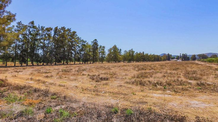 Explore this property 26 ha farm in Cape Farms