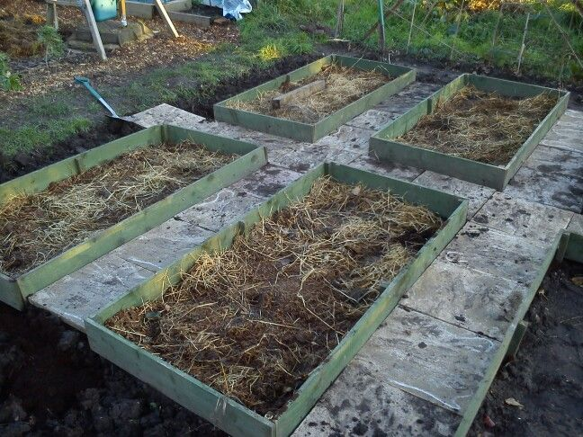 Allotment Pic 4 Mr Handyman London Pinterest Allotment