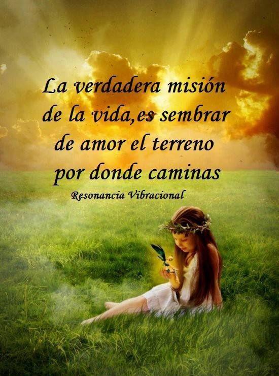 Sembremos Amor Armonia Y Paz A Lo Largo De Nuestro Camino