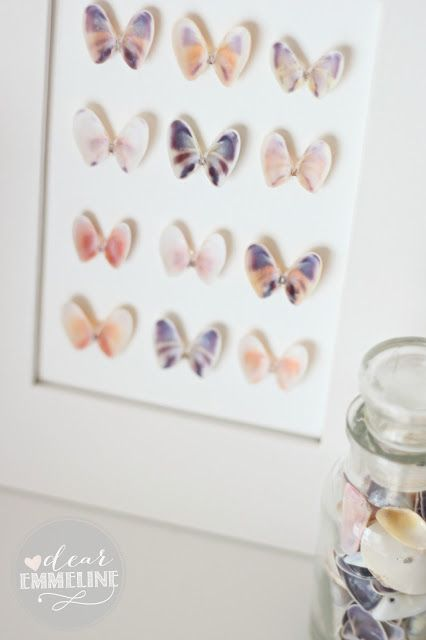 These pretty shells used as specimen wall art resemble butterflies