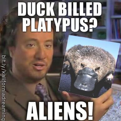 Ancient Aliens meme - DUCK BILLED PLATYPUS.png