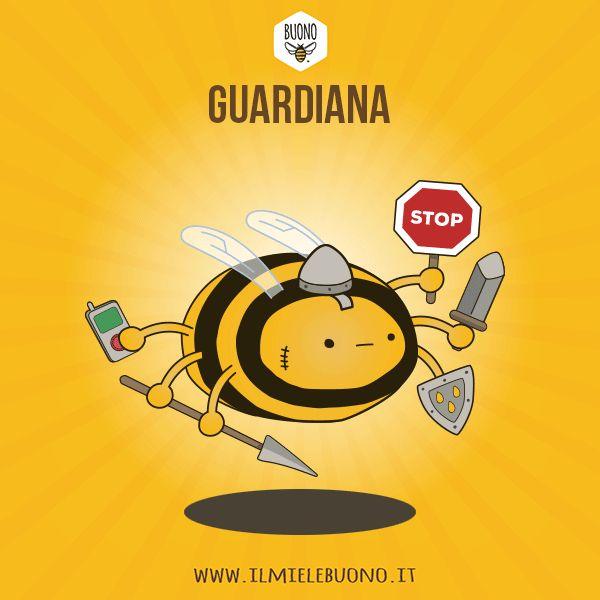 GUARDIANA Responsabile della sicurezza della famiglia. Passa il tempo a ispezionare le api che rientrano dai loro viaggi e fa entrare solo i membri della famiglia. Difende la colonia da eventuali invasori e per farlo è capace di sacrificare la propria vita. E' in grado produrre un particolare feromone capace di mettere in allarme altre api su un possibile pericolo. Ogni tanto si allontana dall'alveare per perlustrare l'area limitrofa e identificare punti importanti per l'orientamento.