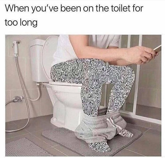 Me Browsing Toilet Memes Funny Pictures Funny
