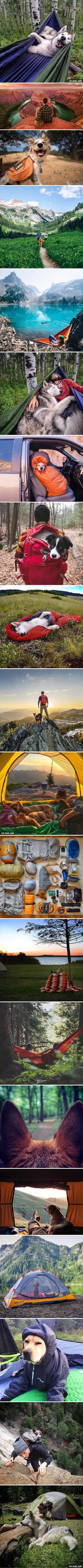 Camping With Dogs Is The Most Wonderful Thing Ever-- that 3rd picture... <3!