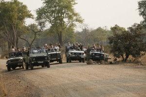 Lion Sighting at Puku Ridge in Zambia
