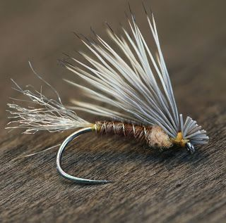 Pheasant Tail X-Caddis - Fly Fish Food -- Fly Tying and Fly Fishing #flyfishing