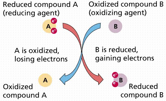 A succinct explanation of oxidation-reduction reactions (redox) with a nice graphic.  #oxidation reduction  #chemistry