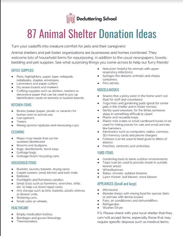 87 Things To Donate To Your Local Animal Shelter Besides Pet Food Animal Shelter Donations Food Animals Animal Shelter