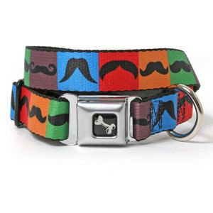 Mustache Dog Collar with miniature seat belt buckle! How creative!
