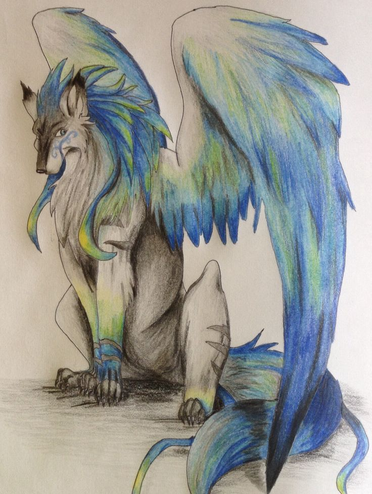 My Anime Wolf Drawing Drawings Pinterest
