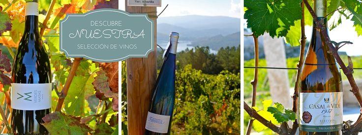 Comprar los mejores vinos gallegos al mejor precio, ribeiro, albariño...