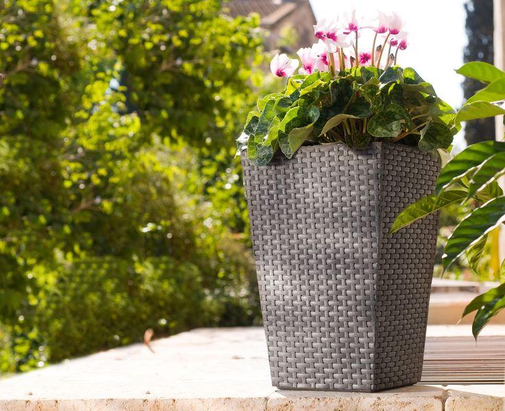 Pedestal de madera para macetas aki casa dise o casa dise o - Pedestal para plantas ...