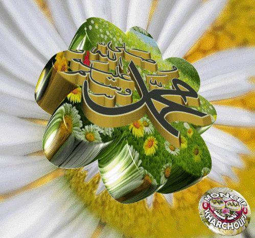 moncef-kharchoufi-..gif (499×465)