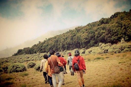 Pondok Salada (@ Mt. Papandayan)
