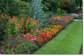 Immaculate garden with bright colours
