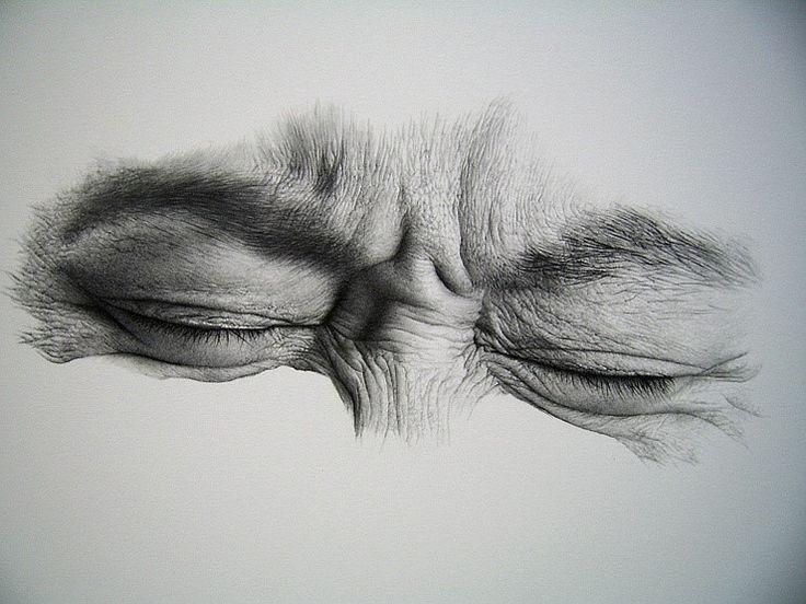 Un coup de crayon impresionnant