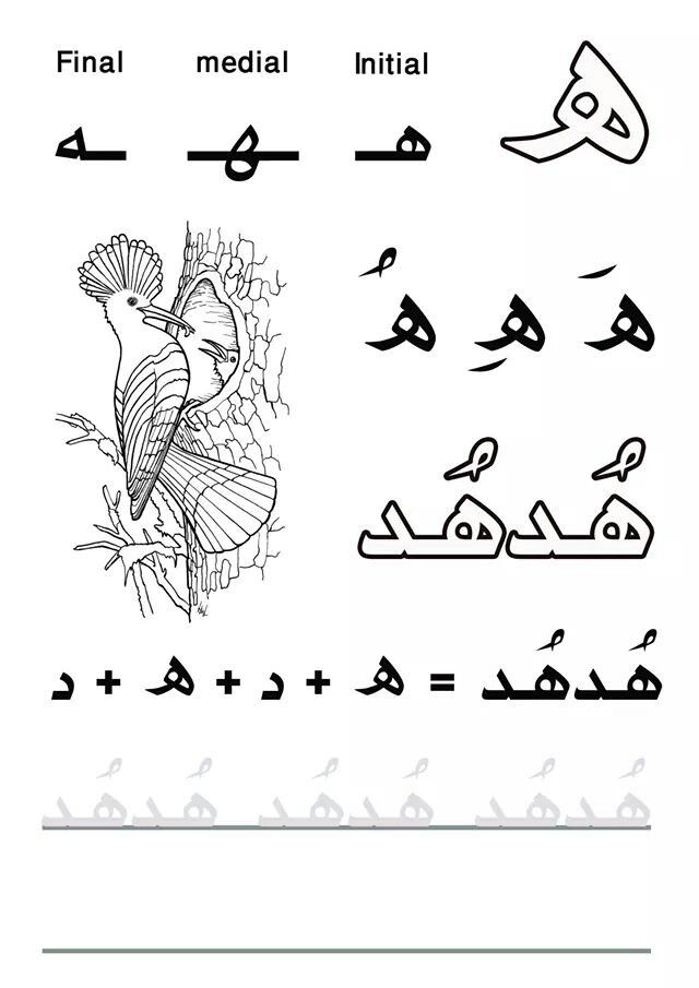 My First Letters and Words #practicelearnarabic حرف الهاء