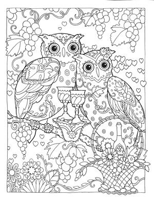 Creative Haven Owls Colouring Book By Marjorie Sarnat Sweeter Than Wine