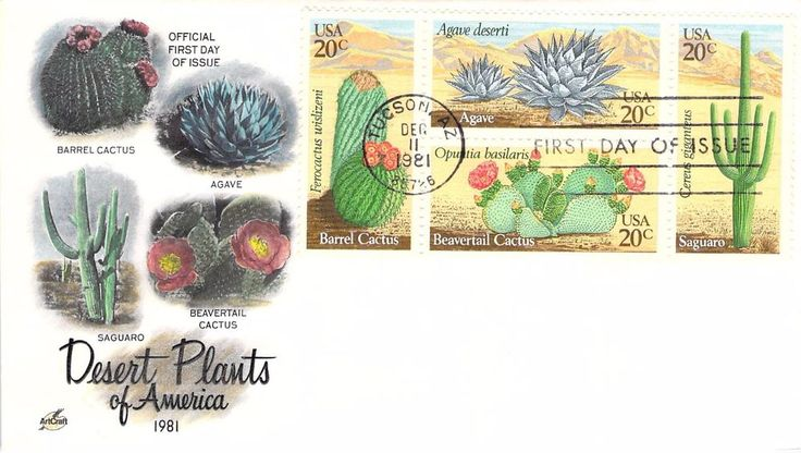 1981 Desert Plants of America Hand Colored Art Craft First Day Cover