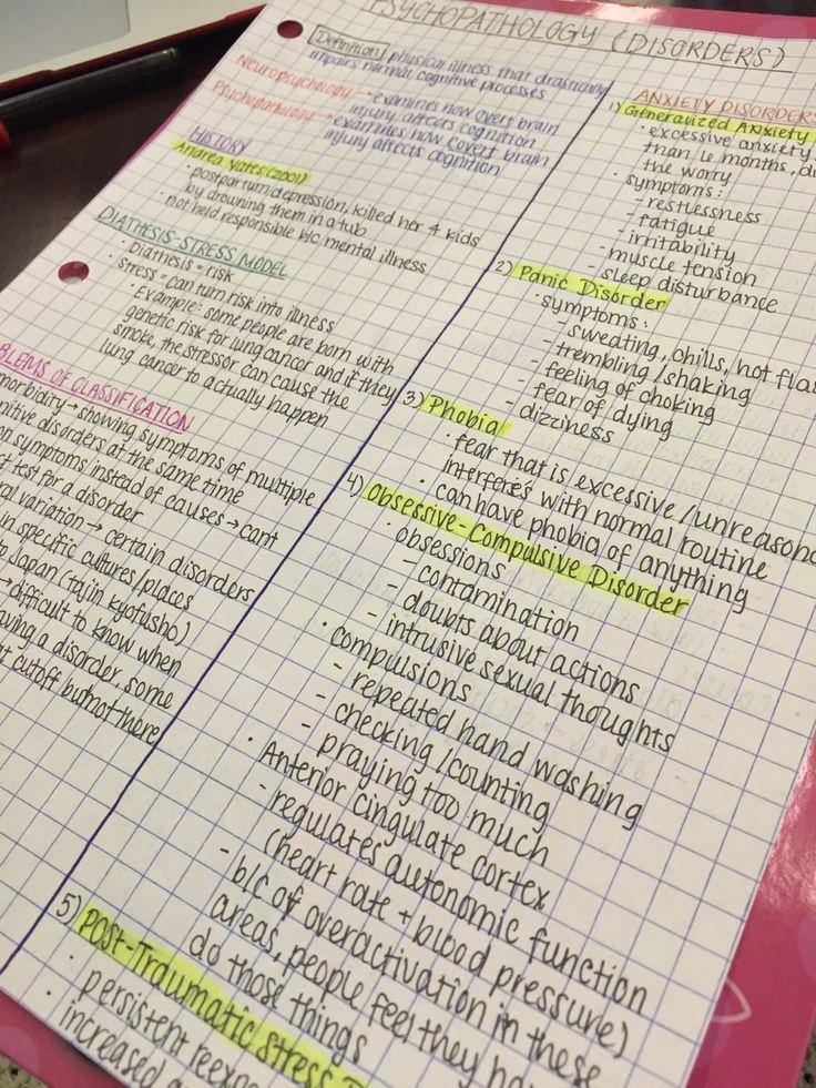 school nowadays essay
