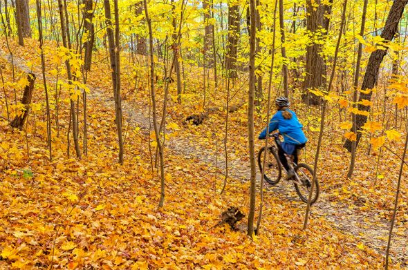 Fall bike rides in Toronto