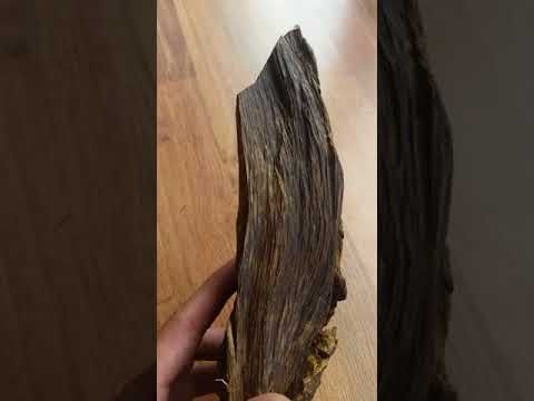Borneo Agarwood Piece for Decorations and Feng Shui