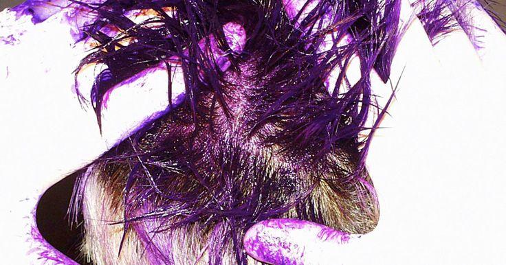 Cómo teñir el cabello de un niño con gelatina o con Kool-Aid para Halloween