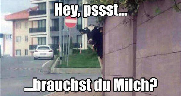 MilchKUHrier | Webfail - Fail Bilder und Fail Videos