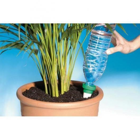 cone de ceramica para regar as plantas