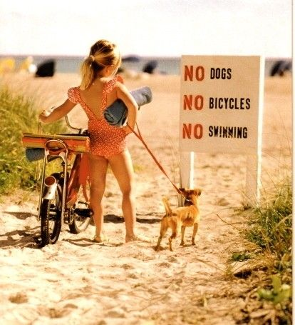 .Bicycles, Little Girls, Go Girls, Dogs, At The Beach, Funny, Life A Beach, Kids, The Rules