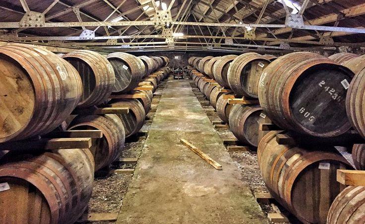 Glenmorangie depolarında özel izinle çektiğim karelerden biri Olgunlaştırmada kullanılan fıçıların viskilerin tadına önemli bir etkisi var. Tadımda aldığımız kokuların kaynağı fermentasyon sırasında oluşan ve daha sonra olgunlaşma sırasında odundan alkole geçen kimyasal maddeler. Mesela izoamil asetat geçiyorsa o viski muz kokuyor diyoruz zira muz kokusu dediğimiz şey izoamil asetat. Yani viskide muz filan yok (veya yakında muz ağacı yok) izobütil asetat var beynimiz o kokuyu kimyasal adıyla…
