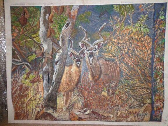 Kudu from photo in pastel - Linda