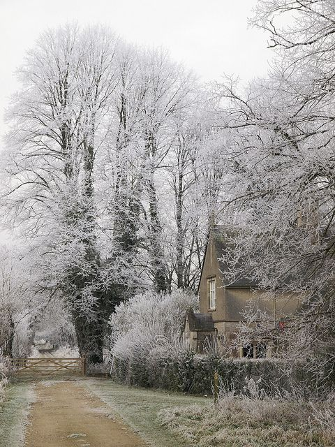 Hoarfrost- Down Ampney, Gloucestershire, England.